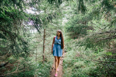 Long hair woman travel in spruce forest Stock Image