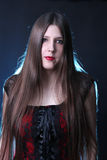 Long haired beauty Stock Images