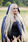Long-haired blonde in the field Stock Photos