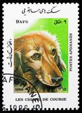 Long-haired dachshund (Canis lupus familiaris), Pedigree Dogs serie, circa 1986. MOSCOW, RUSSIA - NOVEMBER 10, 2018: A stamp printed in Afghanistan shows Long stock photography