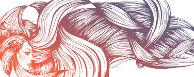 Long haired woman banner. Vector illustration of a beautiful long haired woman Royalty Free Stock Image