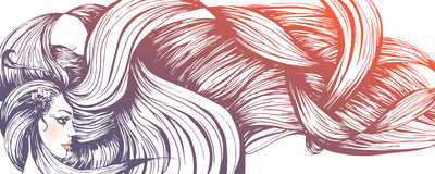 Long haired woman banner. Vector illustration of a beautiful long haired woman Royalty Free Stock Images