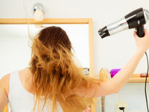 Long haired woman drying hair in bathroom rear view. Haircare. Beautiful long haired woman drying hair in bathroom rear view Stock Image