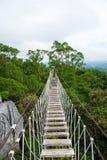 Long hanging bridge stock photo