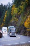 Long haul Semi trucks convoy in rain autumn windnig road Royalty Free Stock Image