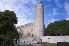 Long hermann tower Royalty Free Stock Images