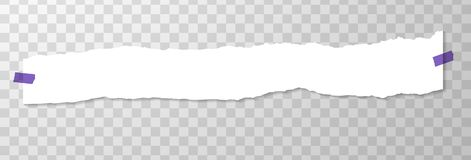 Long Horizontal Torned Off Piece of Paper with Purple Stickers. Empty Page on Transparent Background. Torned. Vector Edge of White Horizontal Paper Banner royalty free illustration