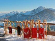 Long horn sleds, wallberg summit Stock Photo