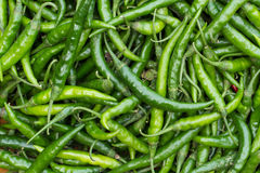 Long, hot green chili. Vegetable Market. Peppers on the counter market. Lots of peppers. Many green chili peppers Stock Image
