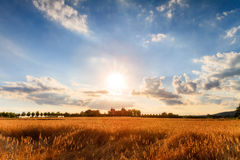 The long hot summer. High Summer Landscape Shot at Chateau Seehof in Oberfranken / Bavaria in Germany, with ripe grain in the foreground and under a blue cloudy Royalty Free Stock Photo