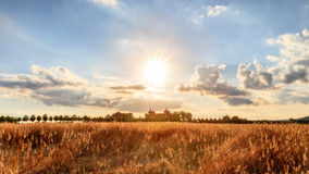 The long hot summer. High Summer Landscape Shot at Chateau Seehof in Oberfranken / Bavaria in Germany, with ripe grain in the foreground and under a blue cloudy Royalty Free Stock Photography