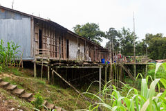 Long house of the Iban tribe. On Borneo Stock Image