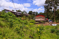 Long house of the Iban tribe. On Borneo Royalty Free Stock Photography