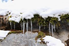 Long icicles in colorful nature background. Mountains, moss. royalty free stock images