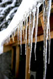 Long icicles detail Stock Images