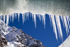 winter icicle Royalty Free Stock Photos