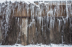 Long Icicles Stock Photos