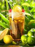 Long Island-Eistee-Cocktail auf tropischem Hintergrund lizenzfreies stockfoto