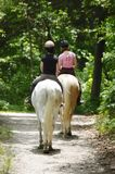 Long island new york horse riding Stock Photography