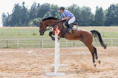 Long jump over a hurdle in equestrian competition Stock Photos