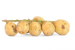 Long Kong. With White Background Tropical Fruit royalty free stock photo