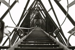 Long Ladder to the Top stock photos