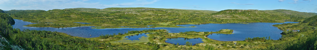 A long lake in summer tundra (panoramic view). Royalty Free Stock Images