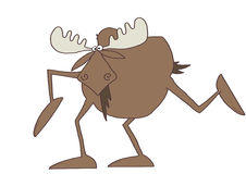 Long legged moose Royalty Free Stock Photo