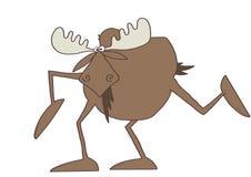 Long legged moose Royalty Free Stock Photo