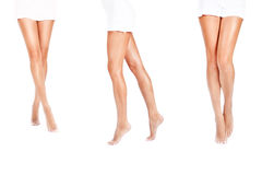 Long legs Royalty Free Stock Image