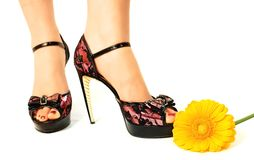Long legs on high heels. On a white background Stock Photos