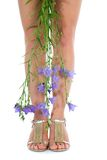 Long legs on high heels with flowers. On white Royalty Free Stock Images