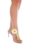 Long Legs On High Heels With Flowers Stock Image
