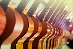 Long line of new acoustic guitars in store. Close-up long line of new acoustic guitars in music store Stock Images