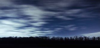 Long line of trees silhouettes against the backdrop of night sky , astrophotography  Royalty Free Stock Photos