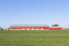 Long Livestock Building Stock Photo