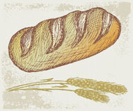 Long loaf. Grunge style. Vector illustration Royalty Free Stock Images