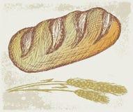 Long loaf. Grunge style. Vector illustration royalty free illustration