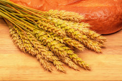 Long loaf and wheat ears Stock Photography