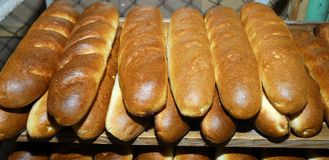 Long loafs Royalty Free Stock Images
