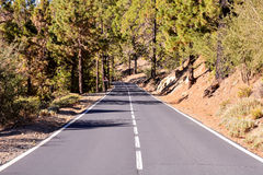 Long Lonely Road Stock Images