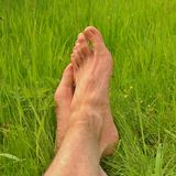 The long male legs are resting in fresh green grass Stock Image