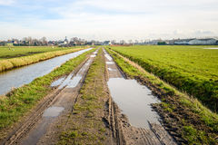 Long and muddy path with puddles between two ditches Stock Photo