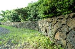 Long mur Photo libre de droits