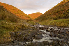 Long Mynd. Valley in Shropshire, England stock photo