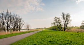 Long narrow road diagonally through the image of the nature rese. Long narrow road diagonally through the image of the Dutch nature reserve Biesbosch. It is Stock Photos