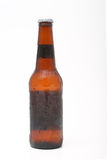 Long neck beer bottle Stock Image