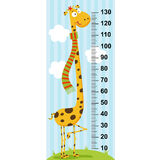 Long neck giraffe height measure. In original proportions 1:4 - vector illustration, eps Stock Images