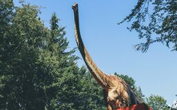 Long necked dinosaur Royalty Free Stock Photography