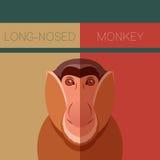 Long-nosed monkey flat postcard. Vector image of the Long-nosed monkey flat postcard Stock Images